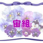 宙組『オーシャンズ11』配役発表!期待と初演からの配役比較まで!